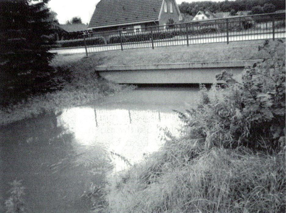 Der Aubach 2002